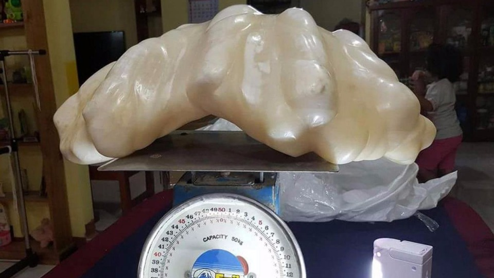 Largest pearl in the world to be exhibited in Philippines